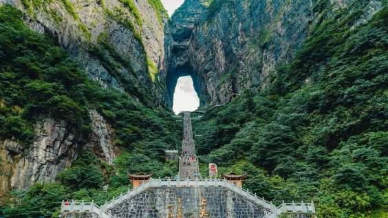 为西藏播下无限可能的生态种子