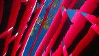 皖国税函[2005]12号 转发国家税务总局关于增值税一般纳税人用进项留抵税额抵减增值税欠税问题的通知