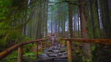 我国最牛的木桥 不用一钉一铆六百年不倒