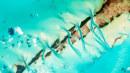 《海绵宝宝》将拍章鱼哥衍生项目,Netflix开发