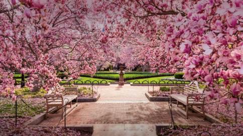 玫瑰金iPhone 6s用户群分析:或瞄准花样美男