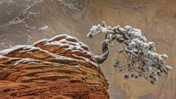 上古卷轴的进化: 《天际》到底带来了什么?