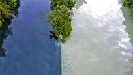安顺市黄果树旅游区水务投资有限责任公司2017年面向社会公开招聘人员公告(三)