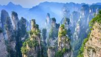 2017年贵州黎平县招聘事业单位笔试成绩