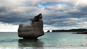 西沙群岛旅游尚无科学开发方案