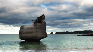伊利收购新西兰第二大乳企威士兰完成交割